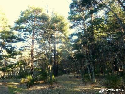 Cascadas Purgatorio;Bosque de Finlandia; los valles pasiegos mochilas montaña niños embalse de san